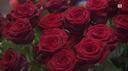 San Valentino, ieri e oggi