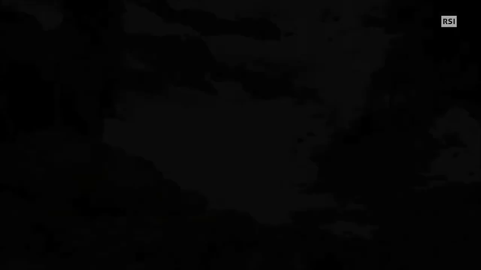 Le immagini esclusive dell'orso avvistato in Valposchiavo