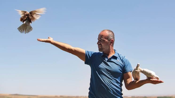 Baran vive a Diyarbakır - nel sudest della Turchia - e addestra piccioni sin da quando era adolescente