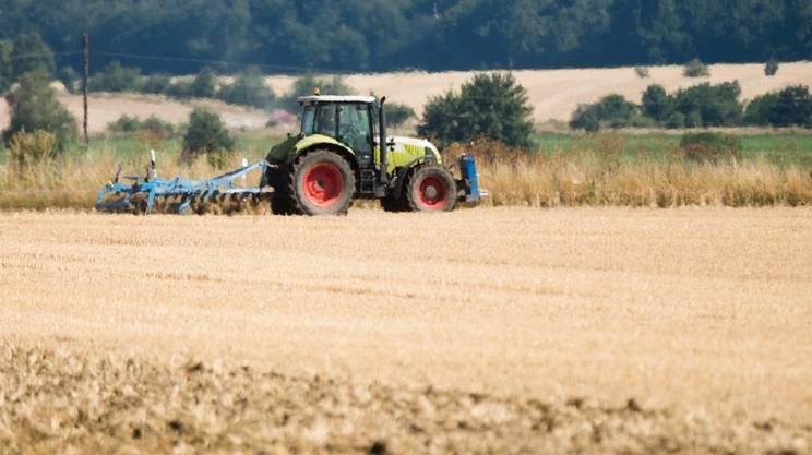 Campo agricolo sotto la stecca del sole nella Bassa Sassonia