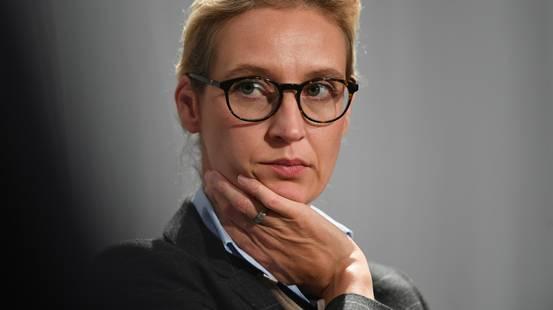 AfD, Alice Weidel indagata