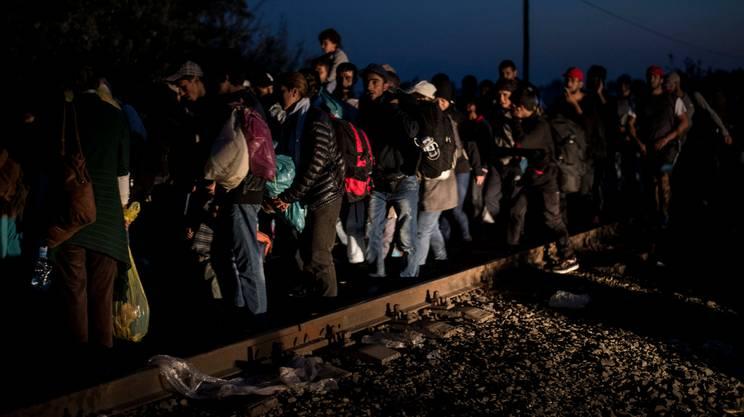 Migranti in arrivo a Roszke, alla frontiera serbo-ungherese