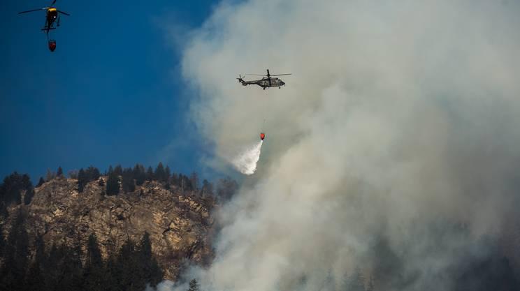 Votazione a Mesocco: il grave incendio boschivo di fine 2016 e un aumento fino a 3 milioni per il credito destinato ai lavori di ripristino del terreno