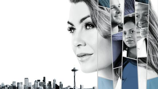Grey's Anatomy - 14a stagione