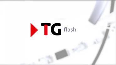 Telegiornale flash