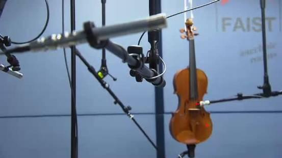Funghi per trasformare i violini