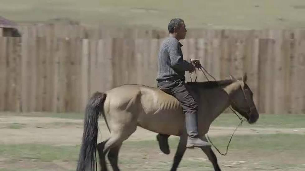 Mongolia, pastorizia più sostenibile
