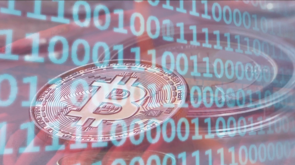 trader bitcoin negociando con tiburones indirizzo bitcoin errato inserito