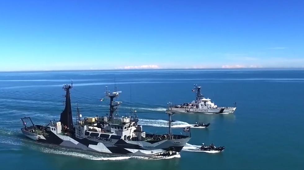 """Il """"Milagro"""" del mare di Sea Shepherd"""