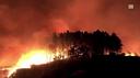Emergenza incendi in Galizia