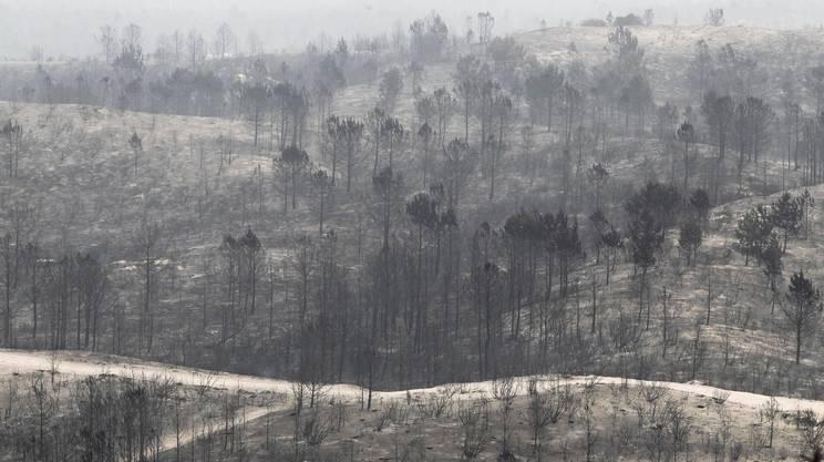 Portogallo devastato dagli incendi