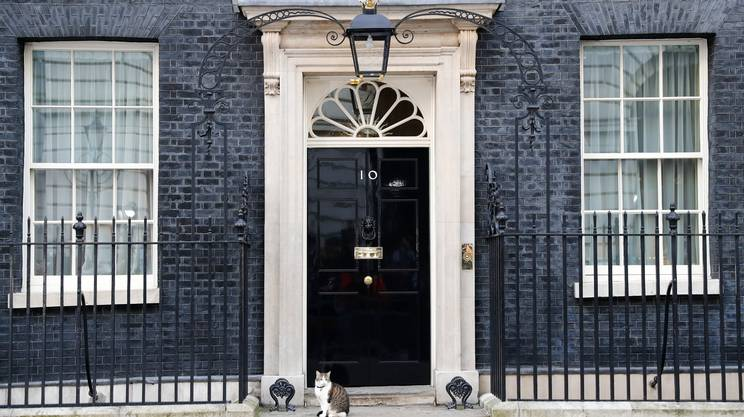 Il gatto Larry fuori dalla residenza del premier Cameron