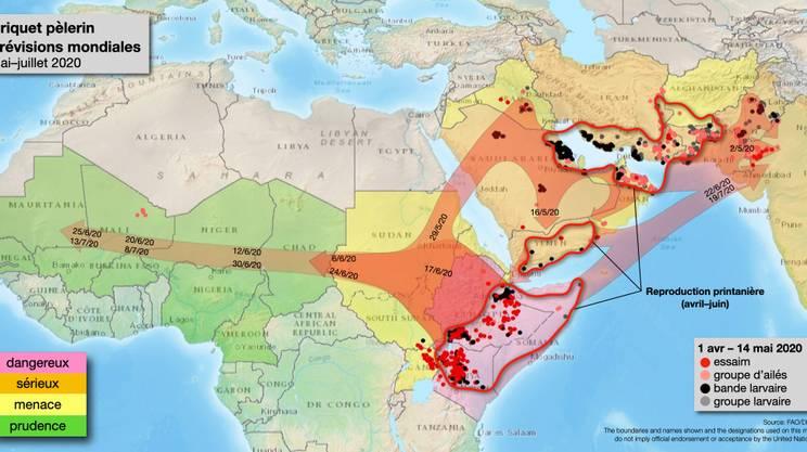 La situazione in Africa e Penisola Arabica