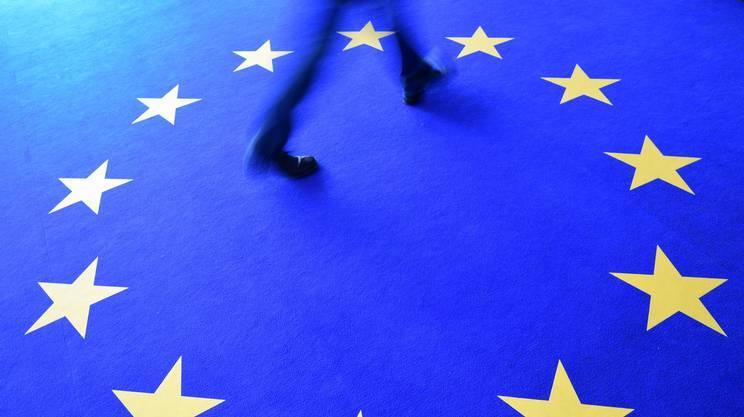 Le elezioni UE di maggio hanno segnato l'avanzata degli euroscettici