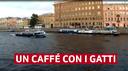 I tanti volti dei moderni caffè (7)