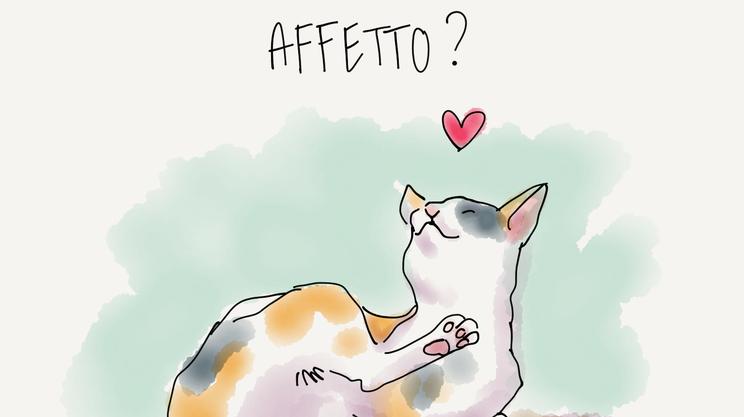 Quattro domande sui gatti alla divulgatrice scientifica Monica Marelli
