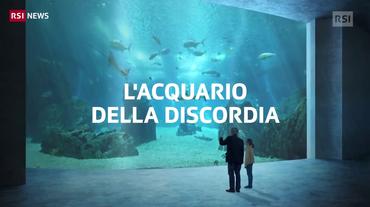 L'acquario della discordia