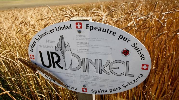 Il Consiglio federale ha elaborato la nuova strategia per l'agricoltura elvetica