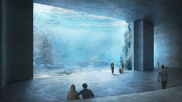 L'Ozeanium: un progetto che fa discutere e che viene ora sottoposto agli elettori di Basilea Città