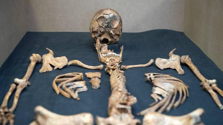 Le ossa rinvenute nei siti archeologici, già rivelatrici di numerose informazioni sui nostri antenati, potrebbero in futuro riservarne ancora di più, grazie a nuovi strumenti di analisi