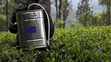 L'iniziativa vuole fissare nella legge disposizioni per ridurre progressivamente, in base a valori di riferimento, i rischi legati ai pesticidi.