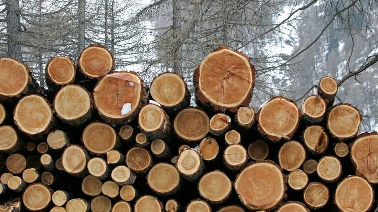 Parametri ecologici minimi e valorizzazione della produzione indigena. L'esempio del legname elvetico al posto di quello proveniente da foreste pluviali disboscate