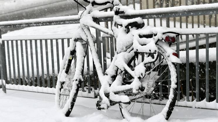 Torna la neve al nord