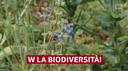 Difendere la biodiversità