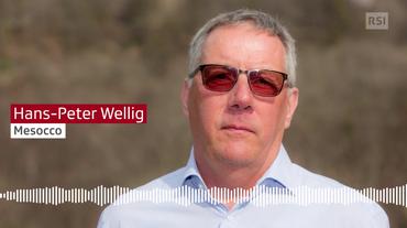 Hans-Peter Wellig
