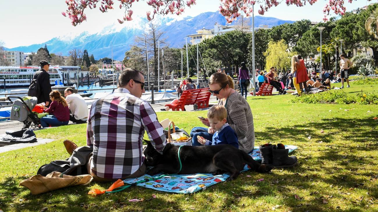 Amore, che ne dici di un picknick?