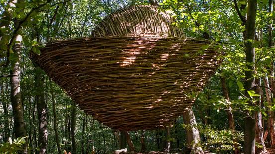 Con Artinbosco la foresta è arte