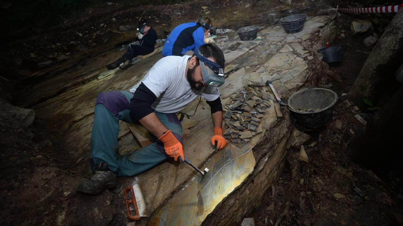 Paleontologici al lavoro
