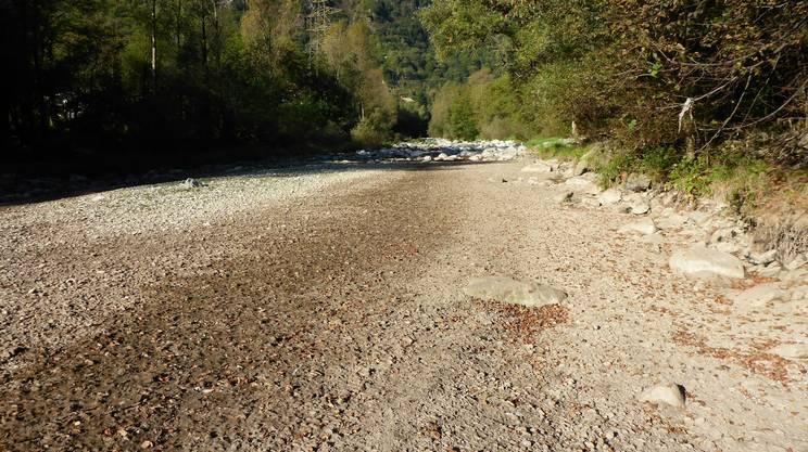 Per ridare vita ai principali corsi d'acqua del cantone