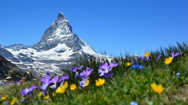 La Svizzera vista dai registi