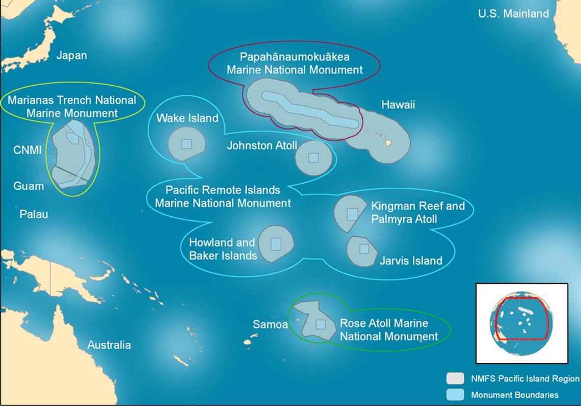 Il Pacific National Islands Marine National Monument si trova tra le isole Hawaii e Samoa