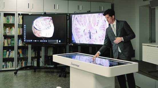 L'anatomia umana in 3D