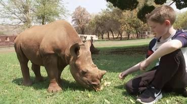 Il bimbo che salva rinoceronti