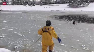 Cane nel ghiaccio, è salvo