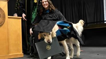 Una laurea da... cane