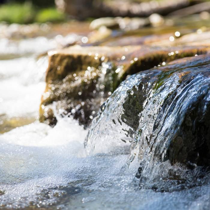 Fiumi svizzeri in pericolo