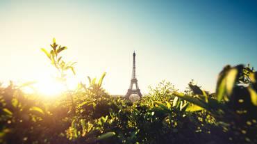 Paris ville écolo?