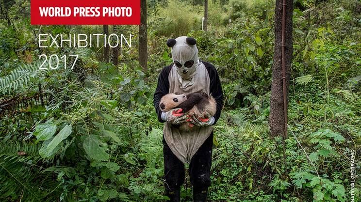 World Press Photo 17
