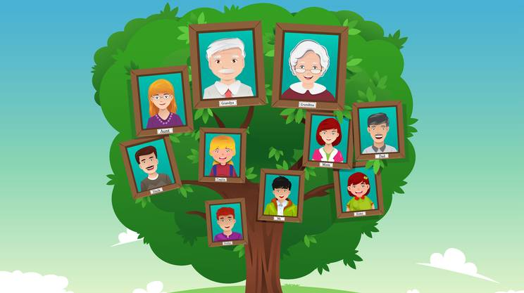Albero genealogico, famiglia