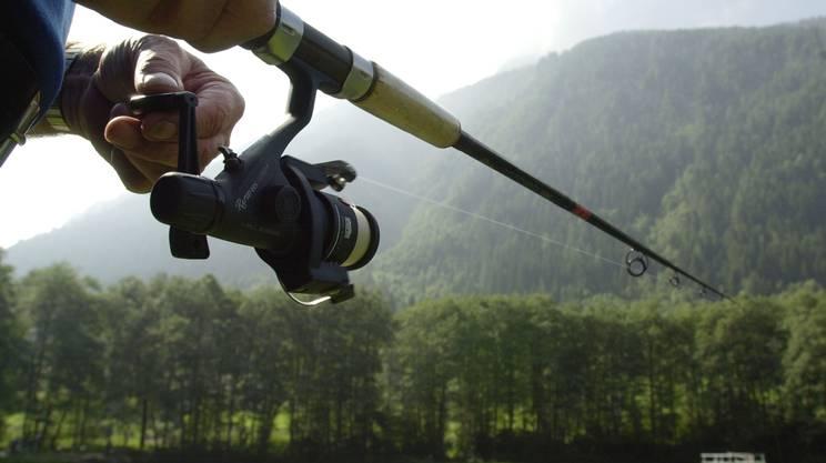Canna da pesca, pescare, fiumi, laghi, ticino
