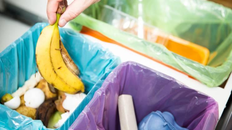 Ambiente, Cucina, Cucina domestica, Inquinamento, Liquami, Cestino racconta differenziata, rifiuti, compostaggio, riciclo