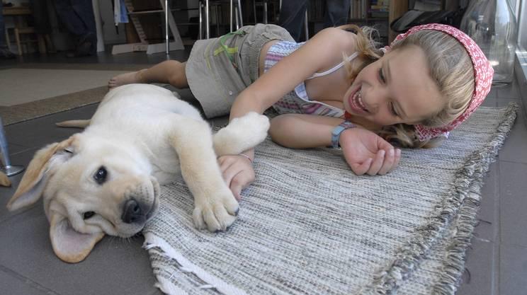 cane, bambini, cucciolo, gioco, compagnia