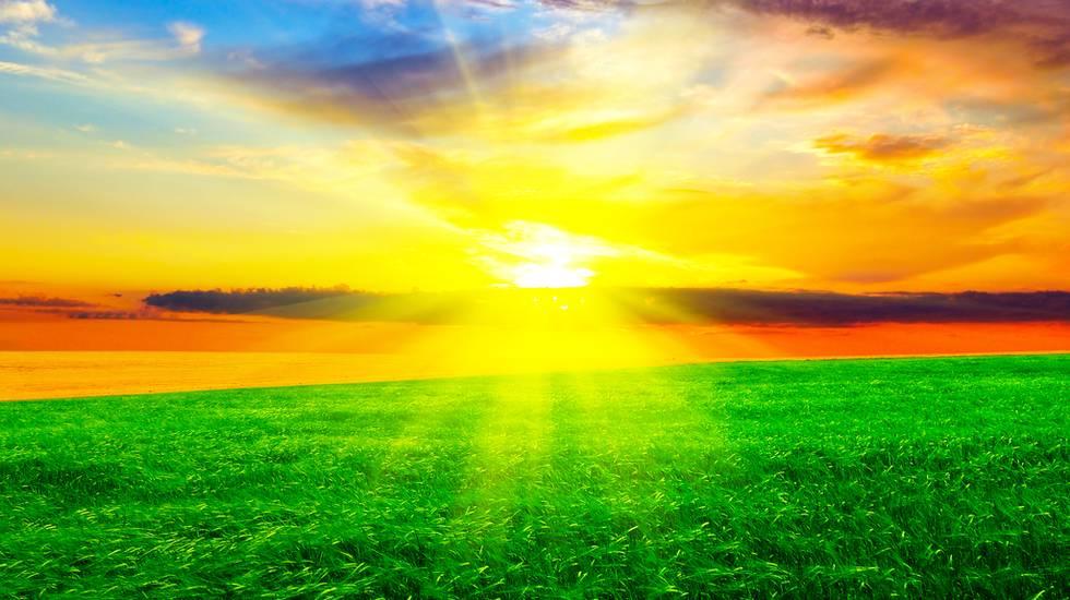 Campo, Sole, Primavera, Aurora, Cielo