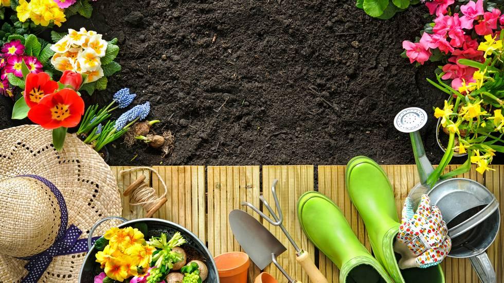 Attrezzi da giardinaggio e fiori sulla terrazza