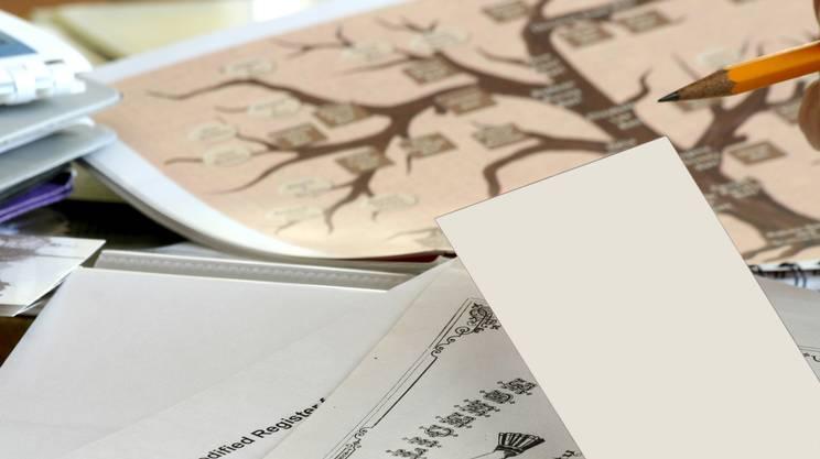 Genealogia, Matita, Oggetto creato dall'uomo, Albero genealogico, Spazio vuoto, Famiglia
