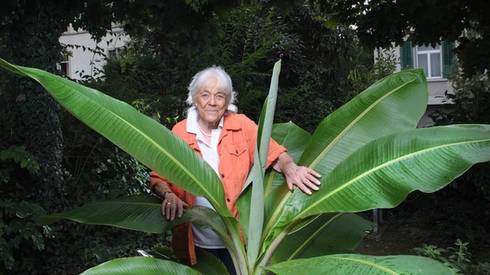 Ursula Brunner